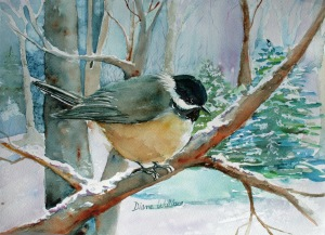 Winter Chickadee copyright 2013
